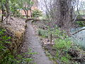 Chico Creek path.jpg