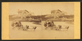 Children in goat cart on beach, from Robert N. Dennis collection of stereoscopic views 6.png