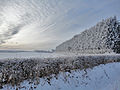 Christmas Day, Northwich (5307042460).jpg