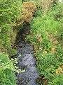 Chyandour stream - geograph.org.uk - 797732.jpg
