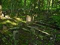 Cmentarz Żydowski w Sopocie 09-cz2013.jpg