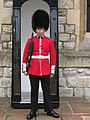 Coldstream Guards sentry - 20090804.jpg