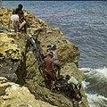 Collectie Nationaal Museum van Wereldculturen TM-20029836 Snorkelen bij de kust van Hato Curacao Boy Lawson (Fotograaf).jpg