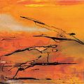 Colore di Pompei 2004.jpg