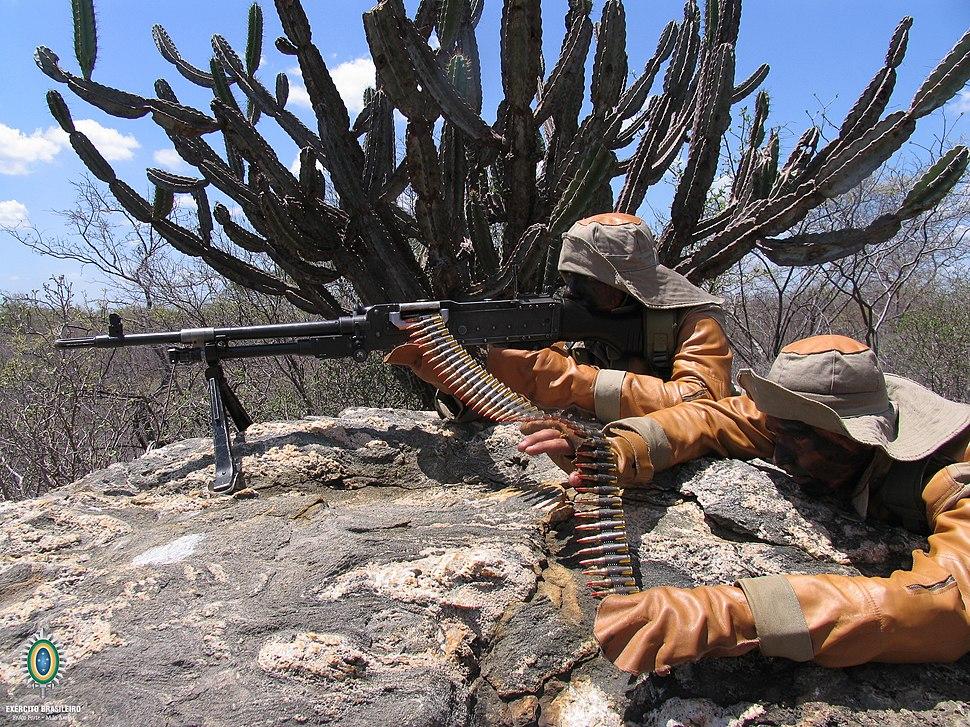 Combatente da Caatinga (26094366194)