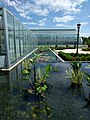 Como Park Zoo and Conservatory - 11.jpg