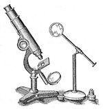 Микроскоп и лупа