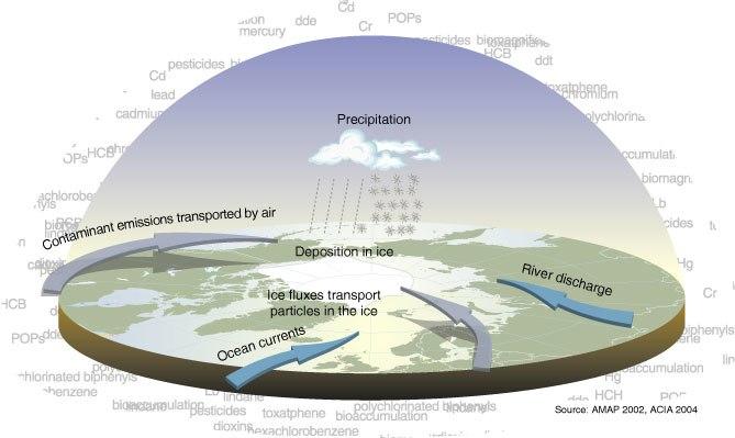 Contamination pathways large