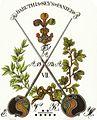 Corps Baruthia (Schlägerwappen).jpg
