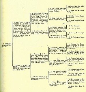 Pedigree chart diagram,shows the occurrence and appearance or phenotypes of a particular gene or organism,its ancestors from 1 generation to the next,most commonly humans,show dogs,race horses;format of family tree (often) top - oldest generations,bottom -the newer