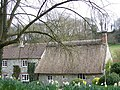 Cottages, Sutton Mandeville - geograph.org.uk - 738360.jpg