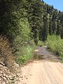 Cottonwood Road - Bridger-Teton NF - 3.jpg