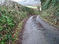 Country lane - geograph.org.uk - 292100.jpg