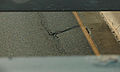 Crack in the road, KOMUnews.jpg