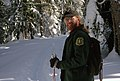 Crosscountry skiing Mt Hood National Forest-3 (37003602536).jpg