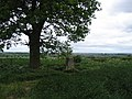 Crown Hill - geograph.org.uk - 13224.jpg