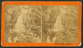 Crystal Cascade, American, from Robert N. Dennis collection of stereoscopic views.png