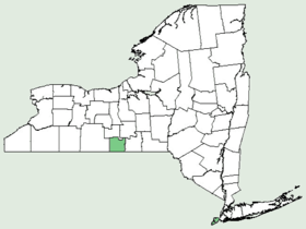 Cucumis melo NY-dist-map.png