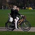 Cycling in Faelledparken.jpg