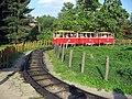 Dětská tramvaj v Zoo Praha.jpg