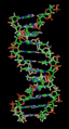 DNA orbit animated static thumb.png