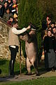 Dancing bear in Beaulieu-sous-la-Roche, France 2007.jpg
