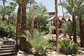 Dans les jardin de l'hôtel à Eilat - Israël (7582556964).jpg