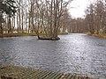 Darłowo-pond.jpg