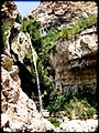 David falls, Judean desert, Israel.jpg