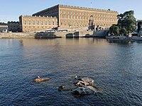 Day161Round5 - Stockholm Wikimania 2019.jpg