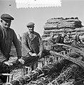 De Schelphoek op Schouwen. Film aanmaak zinkstukken, Bestanddeelnr 905-8269.jpg
