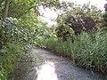 Delft - panoramio - StevenL (24).jpg