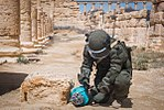 Demining of Palmyra 2017 07.jpg