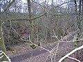 Den o' Alyth - geograph.org.uk - 684532.jpg