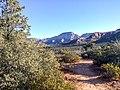 Devil's Bridge Trail, Sedona, Arizona - panoramio (16).jpg