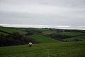 Devon Rural-ness (2069166670).jpg