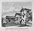 Die Gartenlaube (1875) b 401.jpg