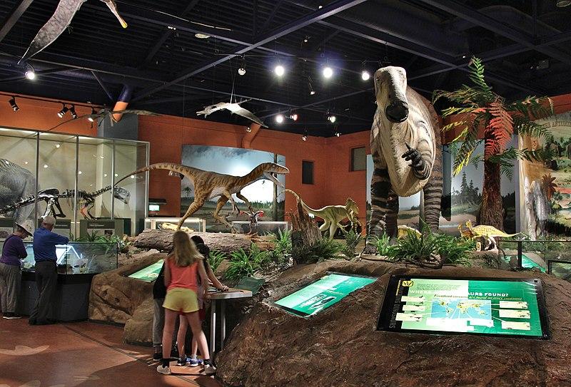 File:Dinosaur Hall-Dinosaurisle.jpg