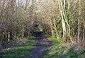 Dismantled Railway, Aldersley, Wolverhampton - geograph.org.uk - 686402.jpg
