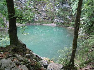 Wild Lake - Image: Divje Jezero 1
