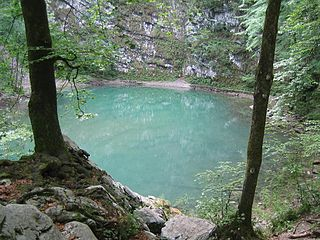 Wild Lake