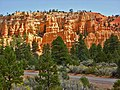 Dixie National Forest, Red Canyon - panoramio - Frans-Banja Mulder (3).jpg
