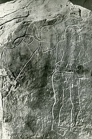 Rock art of the Djelfa region - Aïn Naga.