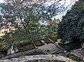 Dobrich Region - Balchik Municipality - Town of Balchik - Balchik Palace and Botanical Garden (17).jpg