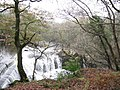 Dolanog Falls weir - geograph.org.uk - 1574206.jpg