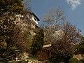 Domaine de la Reine Marie de Roumanie, Bulgarie, Balchik, 4.04.2010 - panoramio - anagh (3).jpg