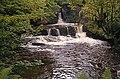 Donemark Falls - Bantry (2) - geograph.org.uk - 654424.jpg