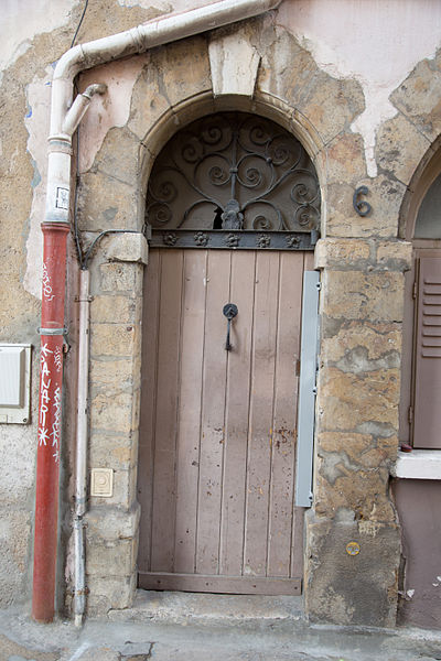 Doors of Lyon, France 26.jpg