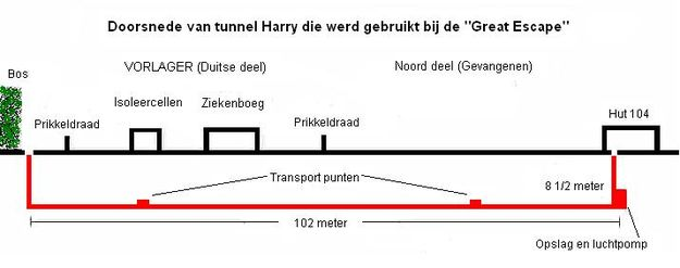 "Doorsnede van ""Harry"""