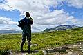 Dovrefjell Sunndalsfjella nasjonalpark.jpg
